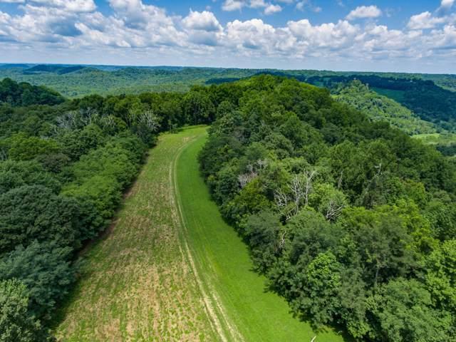 14192 Carr Ridge Rd, Silver Point, TN 38582 (MLS #RTC2064094) :: Village Real Estate