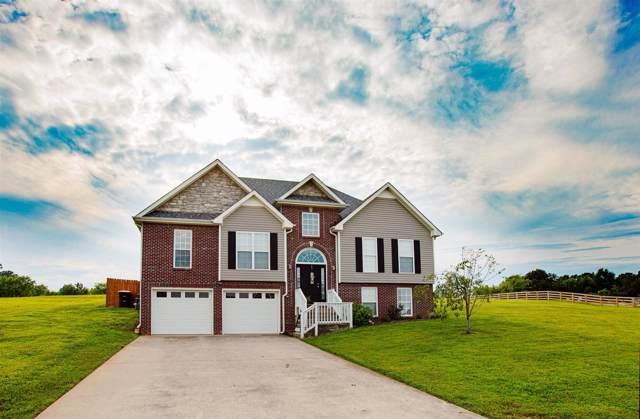 3660 Blackford Hills Rd, Cunningham, TN 37052 (MLS #RTC2066706) :: REMAX Elite