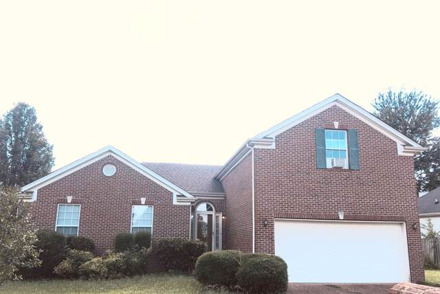 205 Baylee Mika Pl, Joelton, TN 37080 (MLS #RTC2070925) :: The Group Campbell powered by Five Doors Network