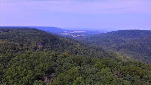 36 Long View Ln, Monteagle, TN 37356 (MLS #RTC2073074) :: The Helton Real Estate Group