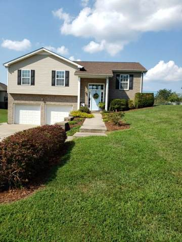 113 Marty Ln, White Bluff, TN 37187 (MLS #RTC2078118) :: Village Real Estate