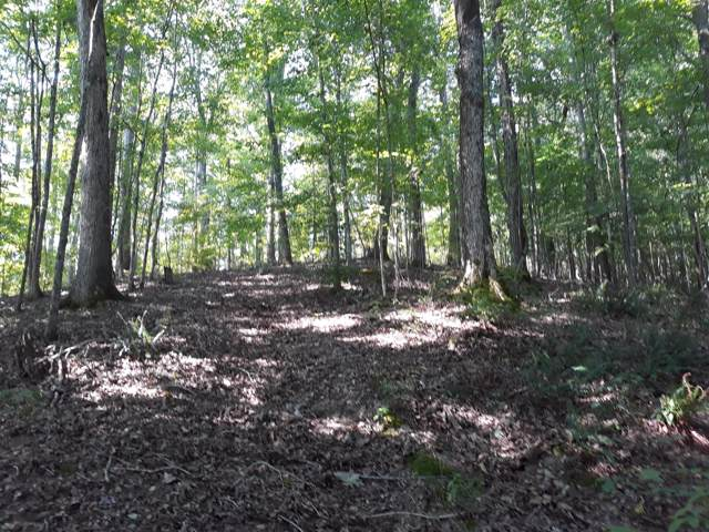 0 Pond Creek Rd, Pegram, TN 37143 (MLS #RTC2078819) :: Katie Morrell | Compass RE