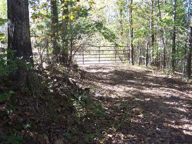 317 Miller Ln, Goodspring, TN 38460 (MLS #RTC2093971) :: Felts Partners