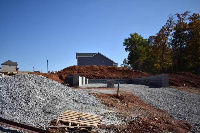 249 Timber Springs, Clarksville, TN 37042 (MLS #RTC2096742) :: Village Real Estate