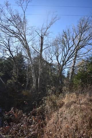 0 Webster Rd, Buffalo Valley, TN 38548 (MLS #RTC2100720) :: Village Real Estate