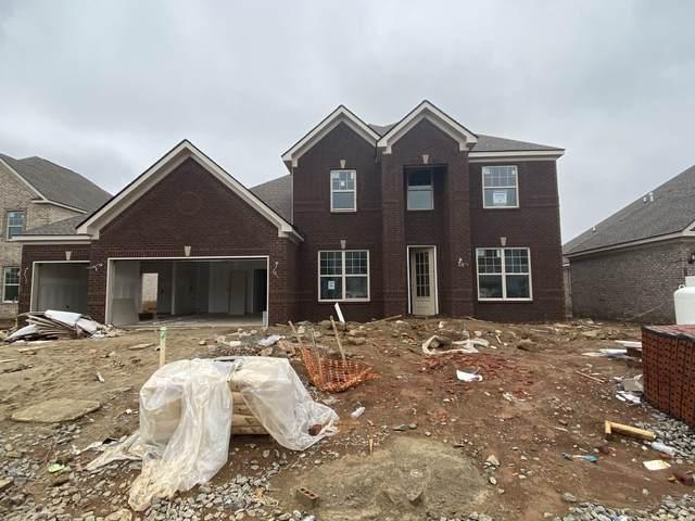 4730 Lapis Lane- Lot 225O, Murfreesboro, TN 37128 (MLS #RTC2118549) :: REMAX Elite