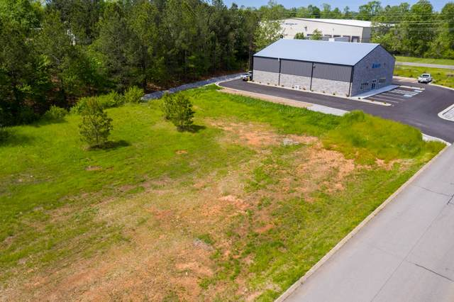 1012 Bradley Drive, Springfield, TN 37172 (MLS #RTC2119771) :: John Jones Real Estate LLC