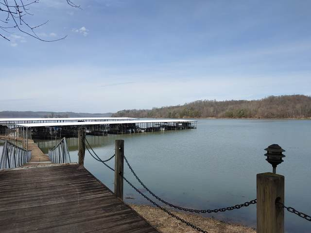 0 Lake Stone Road, Waverly, TN 37185 (MLS #RTC2124963) :: Village Real Estate