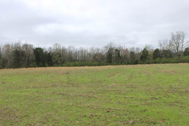 1 Horseshoe Bend Rd, Linden, TN 37096 (MLS #RTC2131411) :: Nelle Anderson & Associates