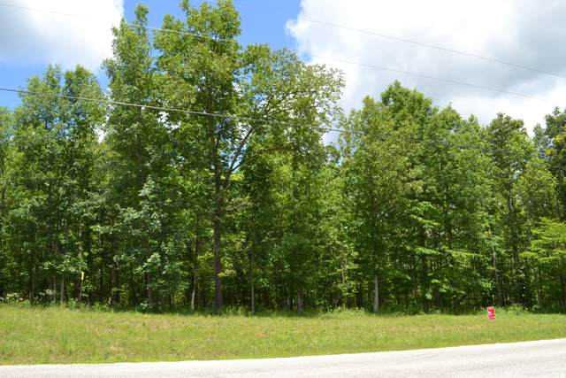 181 Saddlebrook Drive, Hohenwald, TN 38462 (MLS #RTC2133454) :: FYKES Realty Group
