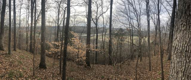 317 Highway 100 Lot 1, Centerville, TN 37033 (MLS #RTC2141940) :: Ashley Claire Real Estate - Benchmark Realty
