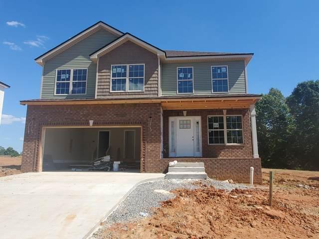 253 Timber Springs, Clarksville, TN 37040 (MLS #RTC2147401) :: Village Real Estate