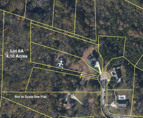 1039B Parsons Way (6A - 4.10 Ac), Hendersonville, TN 37075 (MLS #RTC2148194) :: Nashville on the Move