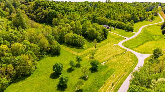 0 Scenic Drive, Pulaski, TN 38478 (MLS #RTC2149161) :: Stormberg Real Estate Group