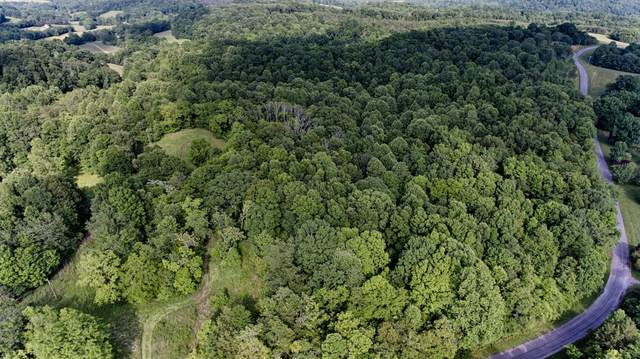0 Chestnut Grove, Pulaski, TN 38478 (MLS #RTC2152074) :: Stormberg Real Estate Group