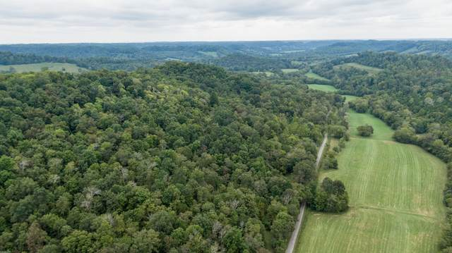 0 Young Hollow Road, Pulaski, TN 38478 (MLS #RTC2153571) :: Nashville on the Move