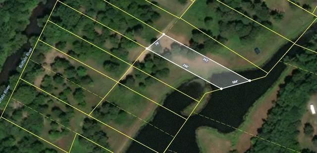 161 Barnes Lake Rd, Hohenwald, TN 38462 (MLS #RTC2155466) :: CityLiving Group