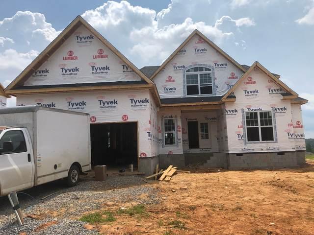 258 Timber Springs, Clarksville, TN 37042 (MLS #RTC2157577) :: Village Real Estate