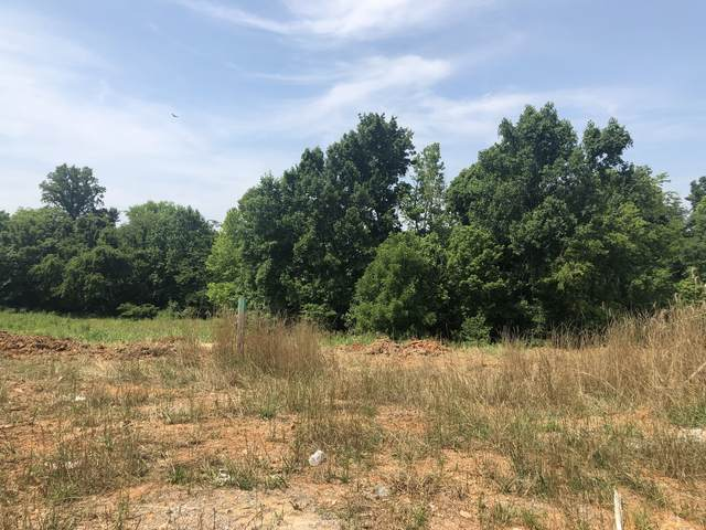 76 Dunbar, Clarksville, TN 37043 (MLS #RTC2159603) :: CityLiving Group