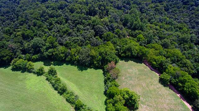 0 Hidden Hollow Road, Dellrose, TN 38453 (MLS #RTC2161581) :: Armstrong Real Estate