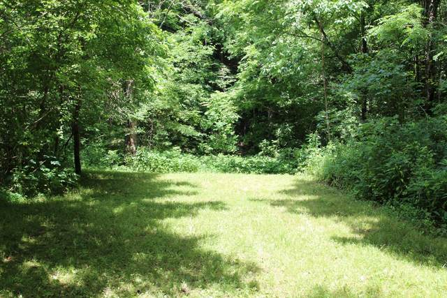 0 Dancer Branch Rd, Stewart, TN 37175 (MLS #RTC2165475) :: DeSelms Real Estate