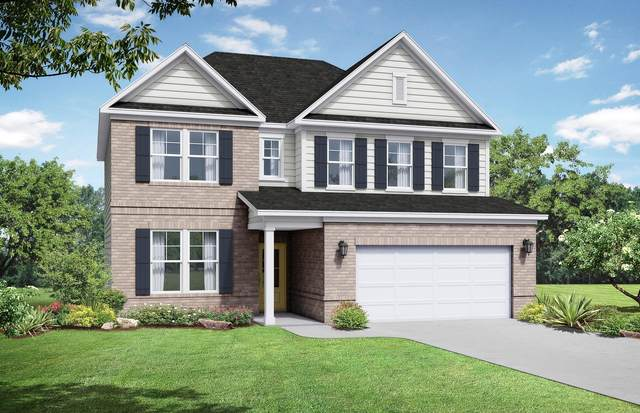 203 Snapdragon Drive, Smyrna, TN 37167 (MLS #RTC2168468) :: FYKES Realty Group