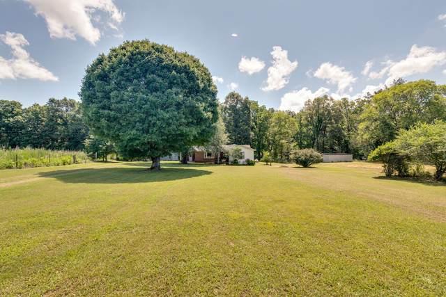 3433 Railroad Bed Rd, Iron City, TN 38463 (MLS #RTC2169874) :: Village Real Estate