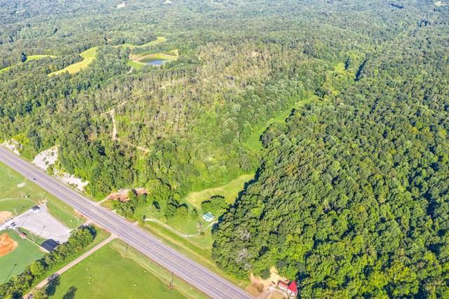 1203 Highway 79, Dover, TN 37058 (MLS #RTC2170862) :: Village Real Estate