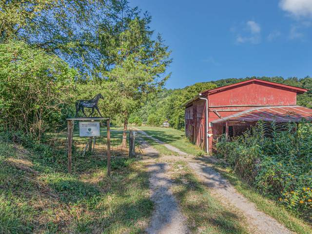 3373 Sweeney Hollow Road, Franklin, TN 37064 (MLS #RTC2175803) :: Benchmark Realty