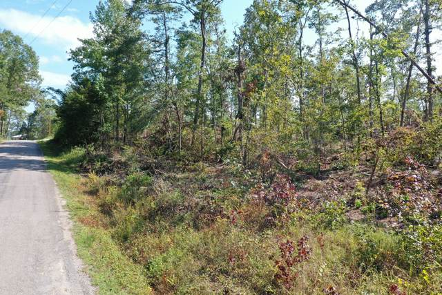 0 Toms Creek Lake Rd, Linden, TN 37096 (MLS #RTC2181155) :: Felts Partners