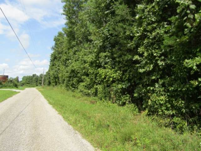2 Bill Roberts Road, Sunbright, TN 37872 (MLS #RTC2181326) :: The Milam Group at Fridrich & Clark Realty