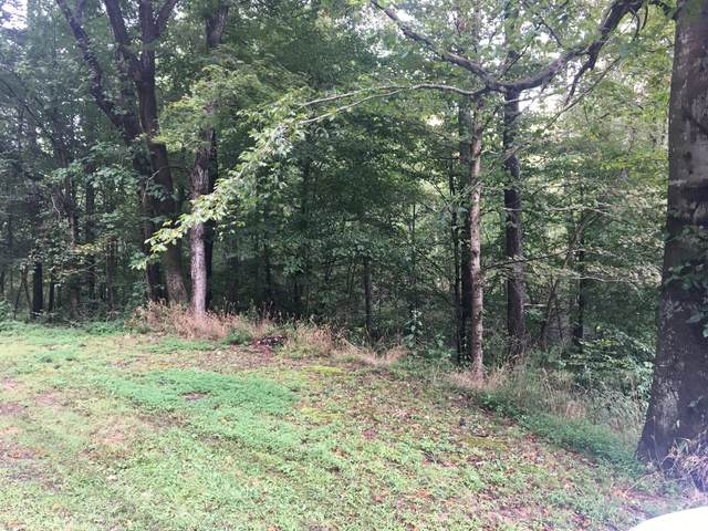0 Highway 13, Erin, TN 37061 (MLS #RTC2181383) :: Hannah Price Team