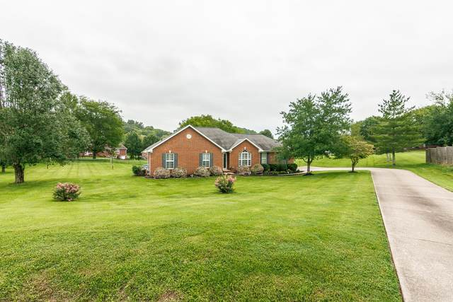 1010 Coulsons Ct, Hendersonville, TN 37075 (MLS #RTC2185970) :: Village Real Estate