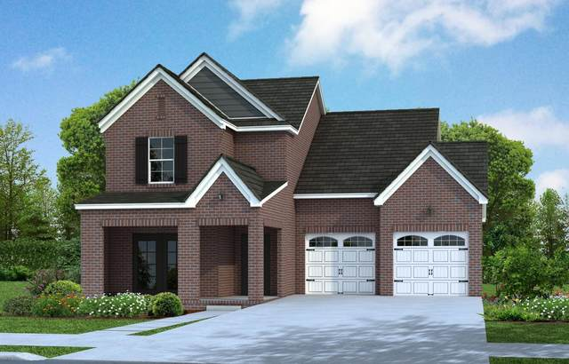 1017 Violet Street, Spring Hill, TN 37174 (MLS #RTC2186405) :: Hannah Price Team