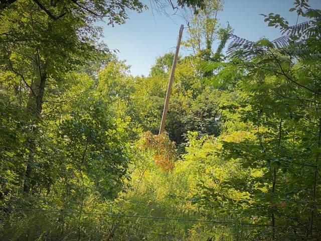 1849 Sycamore Creek, Woodbury, TN 37190 (MLS #RTC2188239) :: Village Real Estate
