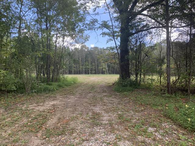 0 Wimberly Rd, Hillsboro, TN 37342 (MLS #RTC2190928) :: Village Real Estate