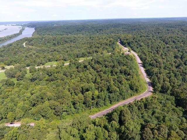115 Diamond Point Drive, Bumpus Mills, TN 37028 (MLS #RTC2194668) :: Village Real Estate