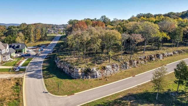8177 Heirloom Blvd (Lot 11002), College Grove, TN 37046 (MLS #RTC2195928) :: RE/MAX Homes And Estates