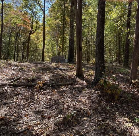 2300 Ramblewood Rd, Clarksville, TN 37040 (MLS #RTC2197306) :: Village Real Estate