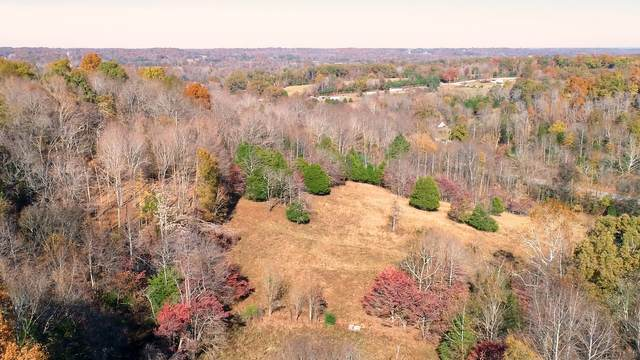6461 Highway 48 N, Cumberland Furnace, TN 37051 (MLS #RTC2199005) :: Nashville on the Move