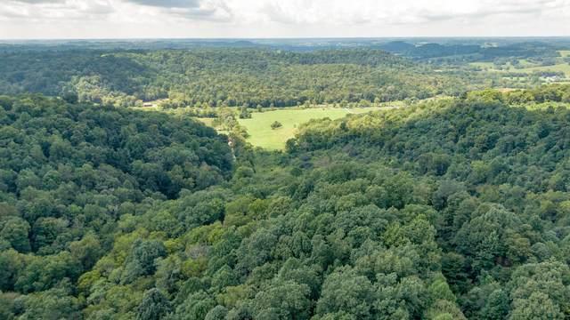0 James Hollow Rd, Lynnville, TN 38472 (MLS #RTC2204426) :: Village Real Estate