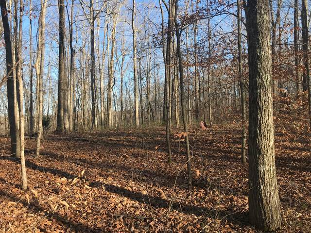 5900 Pinewood Rd, Franklin, TN 37064 (MLS #RTC2209618) :: Movement Property Group