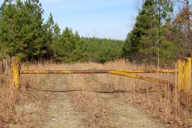 0 Lick Creek Rd, Dover, TN 37058 (MLS #RTC2216776) :: Nelle Anderson & Associates