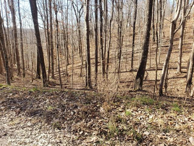 0 Neil Dr, Smithville, TN 37166 (MLS #RTC2221261) :: Village Real Estate