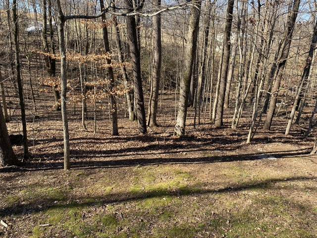0 Hickory Point Dr, Winchester, TN 37398 (MLS #RTC2224561) :: Team Wilson Real Estate Partners