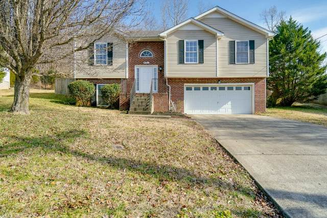 991 Hedge Apple Dr, Clarksville, TN 37040 (MLS #RTC2224848) :: FYKES Realty Group