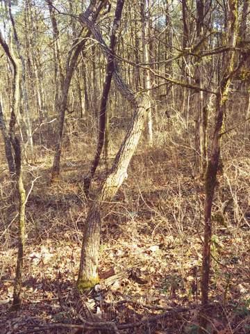 0 W Buckeye Bottom Rd S, Murfreesboro, TN 37129 (MLS #RTC2230630) :: Village Real Estate