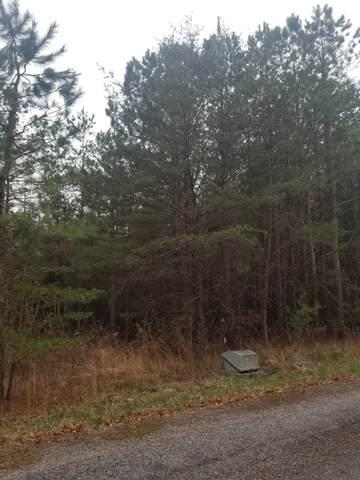 0 River Drive, Spencer, TN 38585 (MLS #RTC2235586) :: Village Real Estate