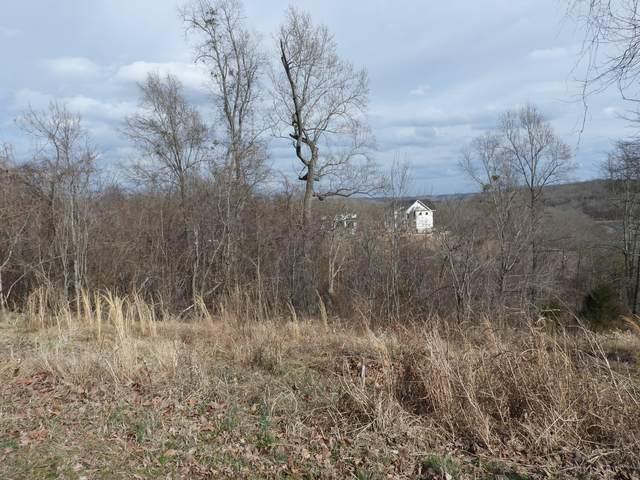 36 River Trace, Dover, TN 37058 (MLS #RTC2235800) :: Village Real Estate