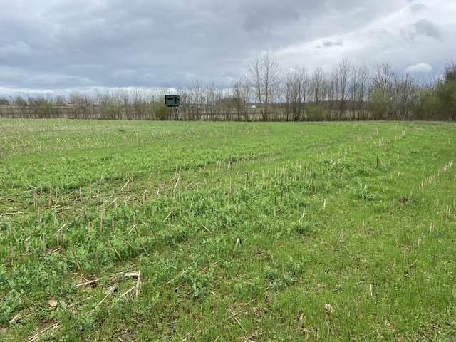 0 Gant Rd, Shelbyville, TN 37160 (MLS #RTC2237701) :: Village Real Estate